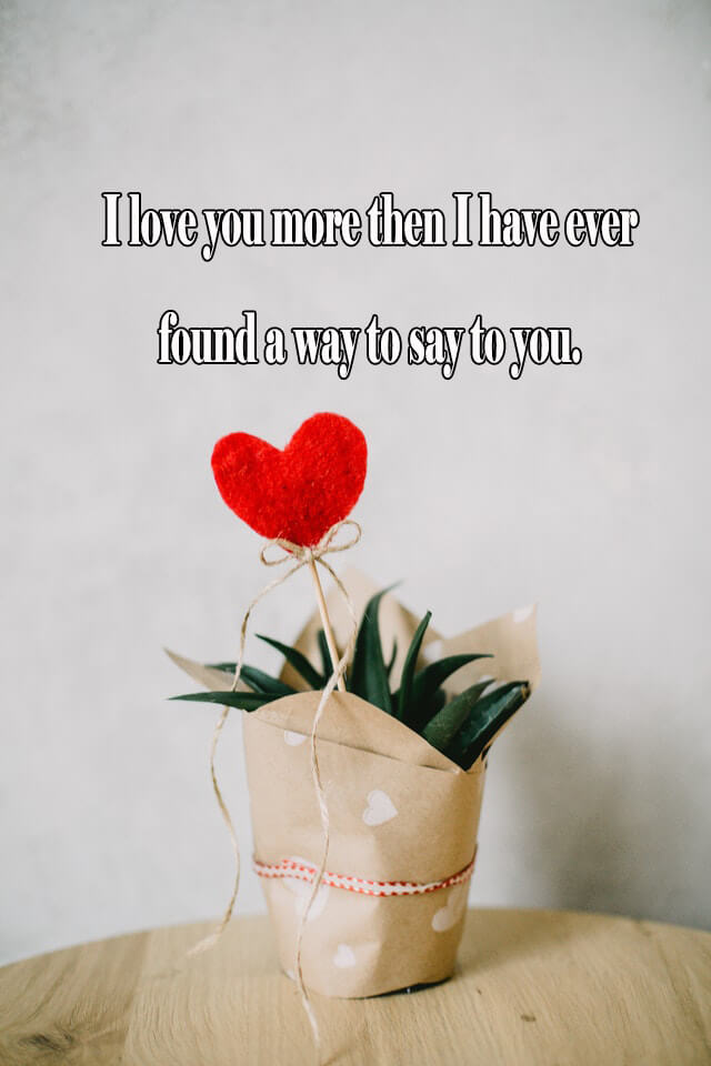 10 Love Quotes: I love you more then I have ever found a way to say to you.