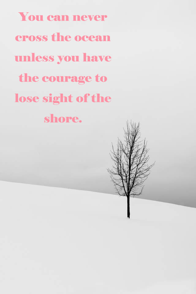 Quotes: You can never cross the ocean unless you have the courage to lose sight of the shore.